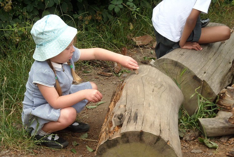 Creativity in nature – supporting children's wellbeing